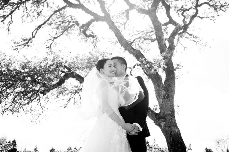 janaeshields.com | Janae Shields Photography | San Francisco Photographer | Wedding Photography in the Bay Area of Northern California | Thomas Fogarty Winery Events _ (11).jpg