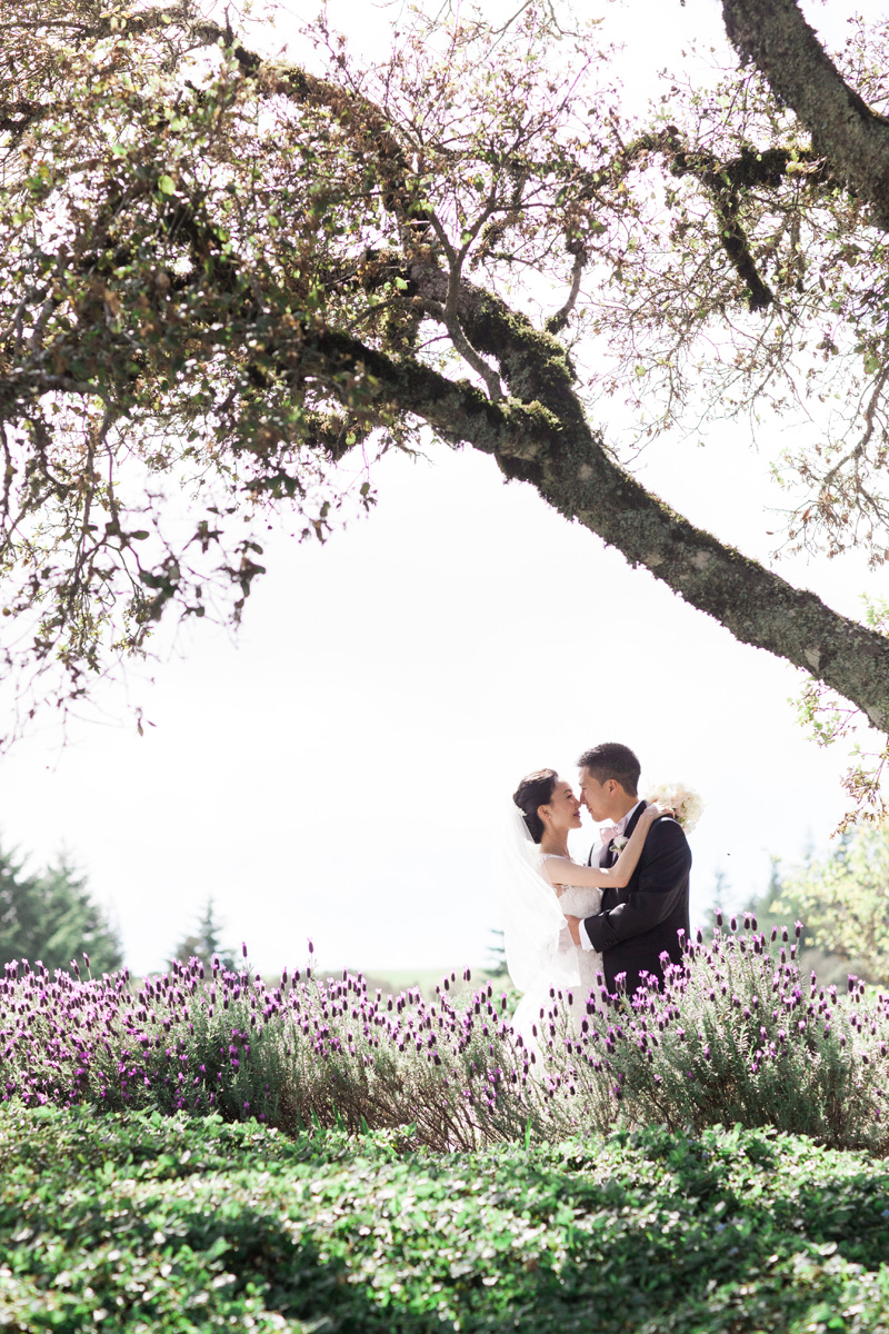 janaeshields.com | Janae Shields Photography | San Francisco Photographer | Wedding Photography in the Bay Area of Northern California | Thomas Fogarty Winery Events _ (10).jpg