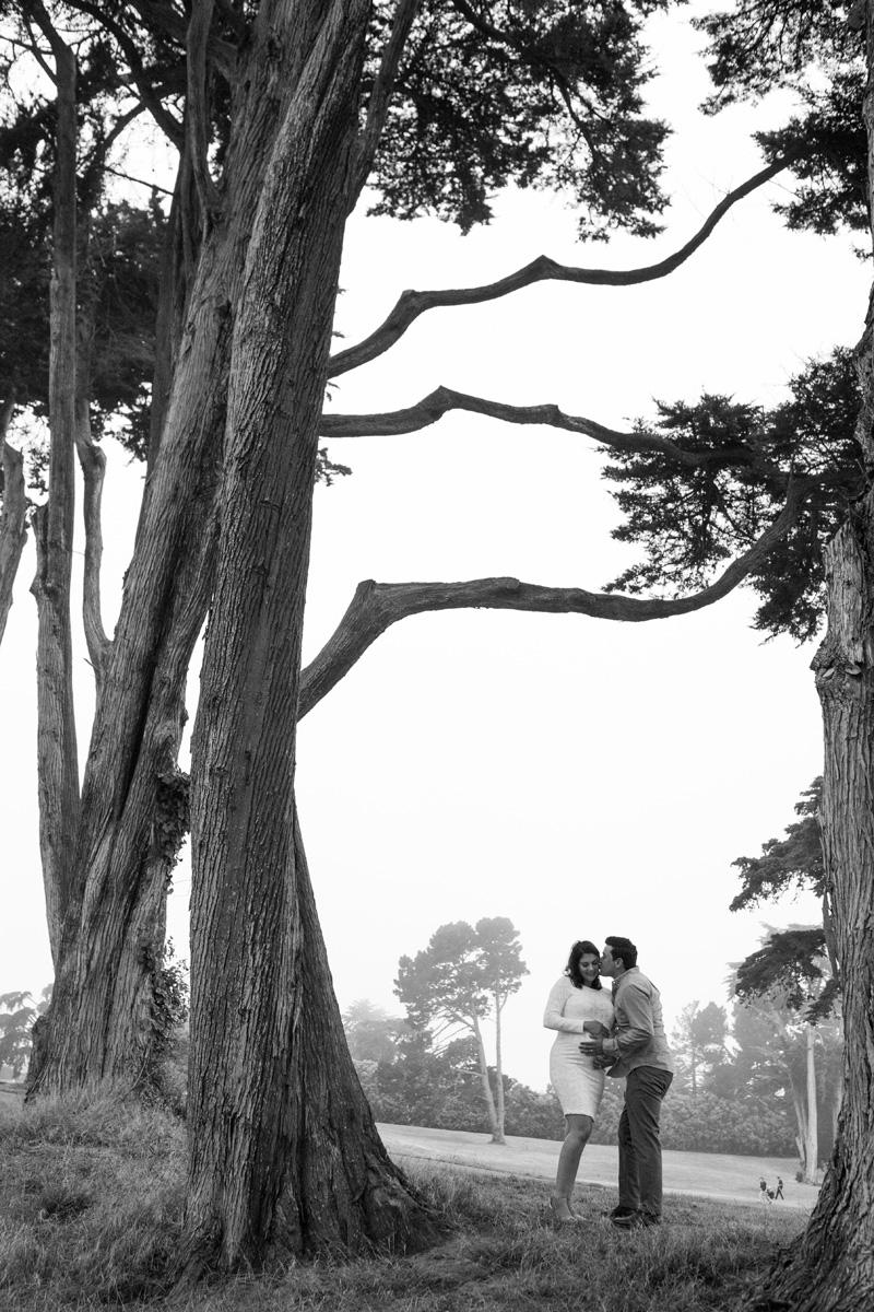 janaeshields.com | Janae Shields Photography | San Francisco Photographer | Maternity Photography in the Bay Area of Northern California  _ (9).jpg