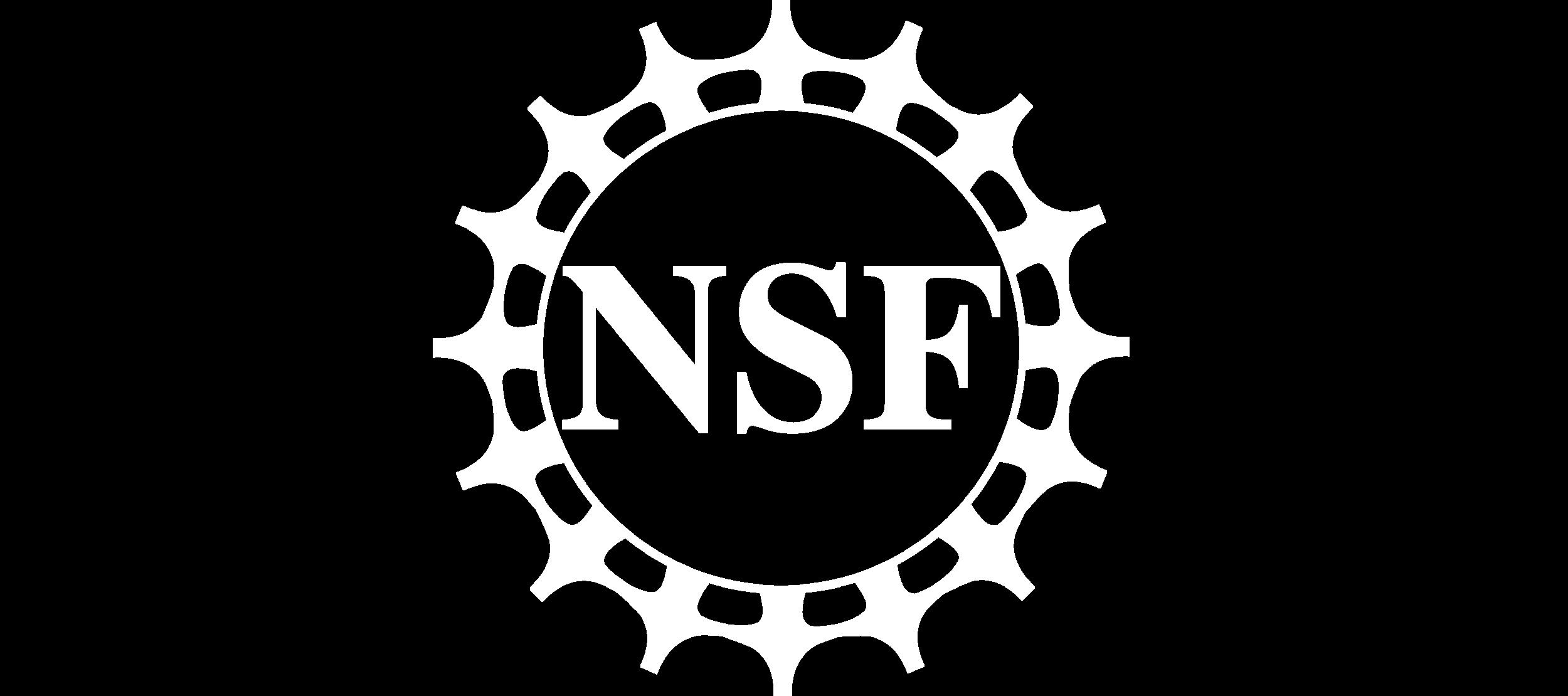 nsf2 horizontal.png