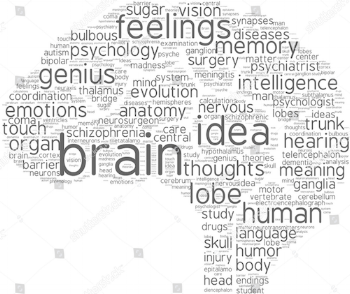 brainwhite.png