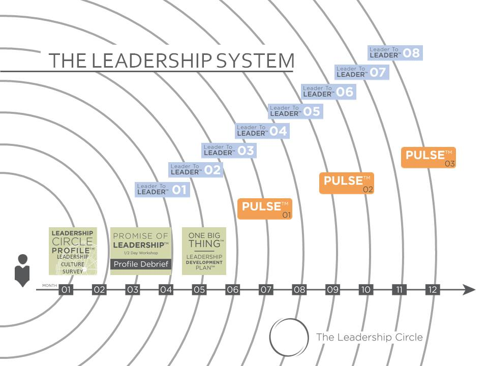 The Leadership System Cover Photo.jpg