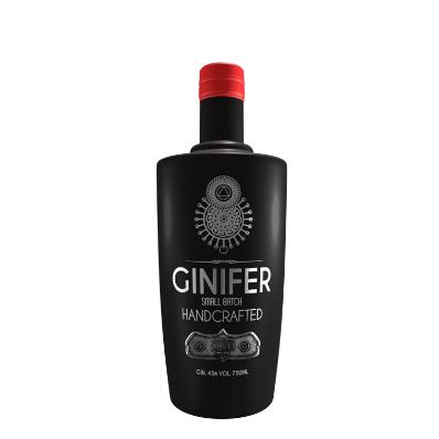 Ginifer.png