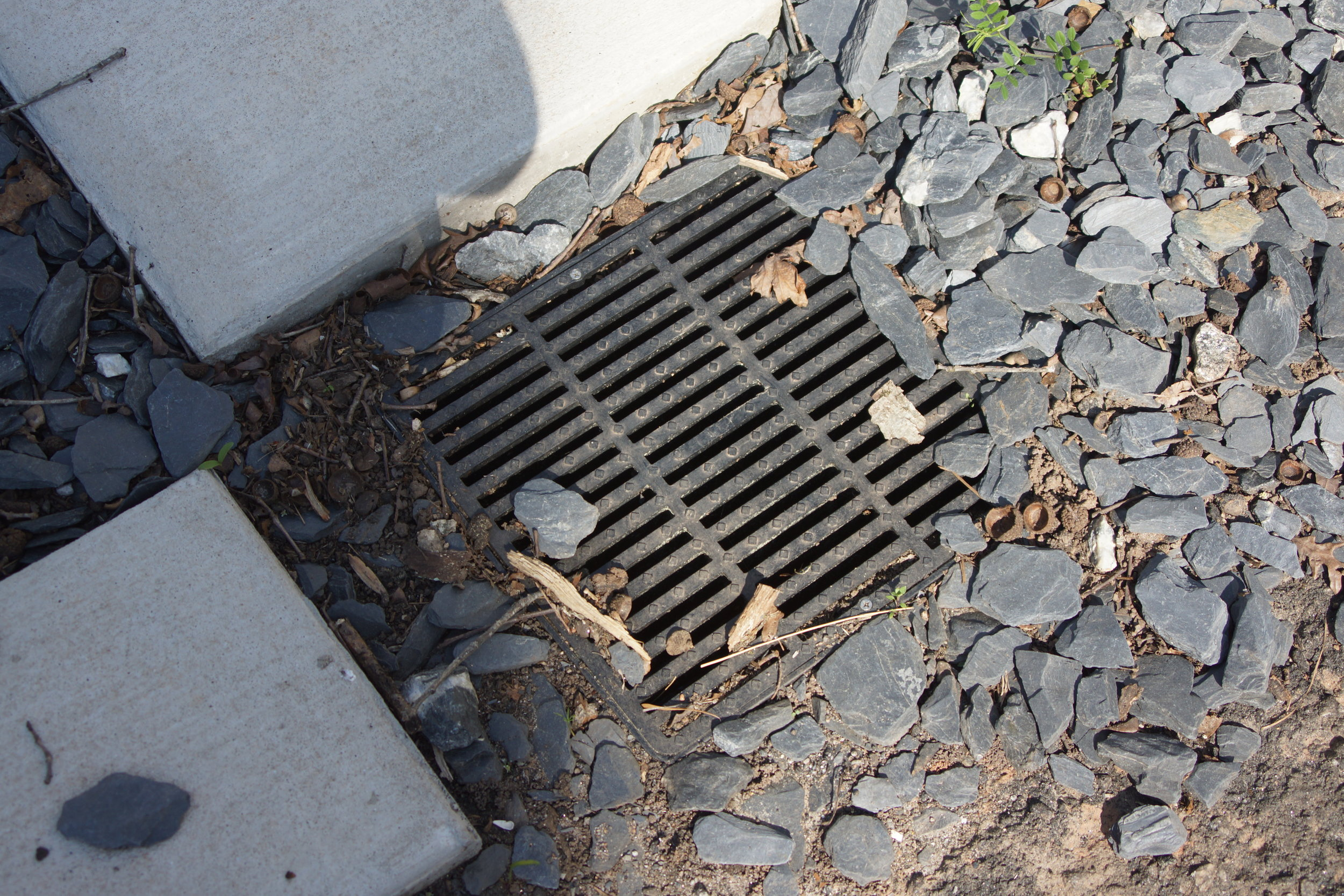 Drainage return that collects water from driveway.JPG