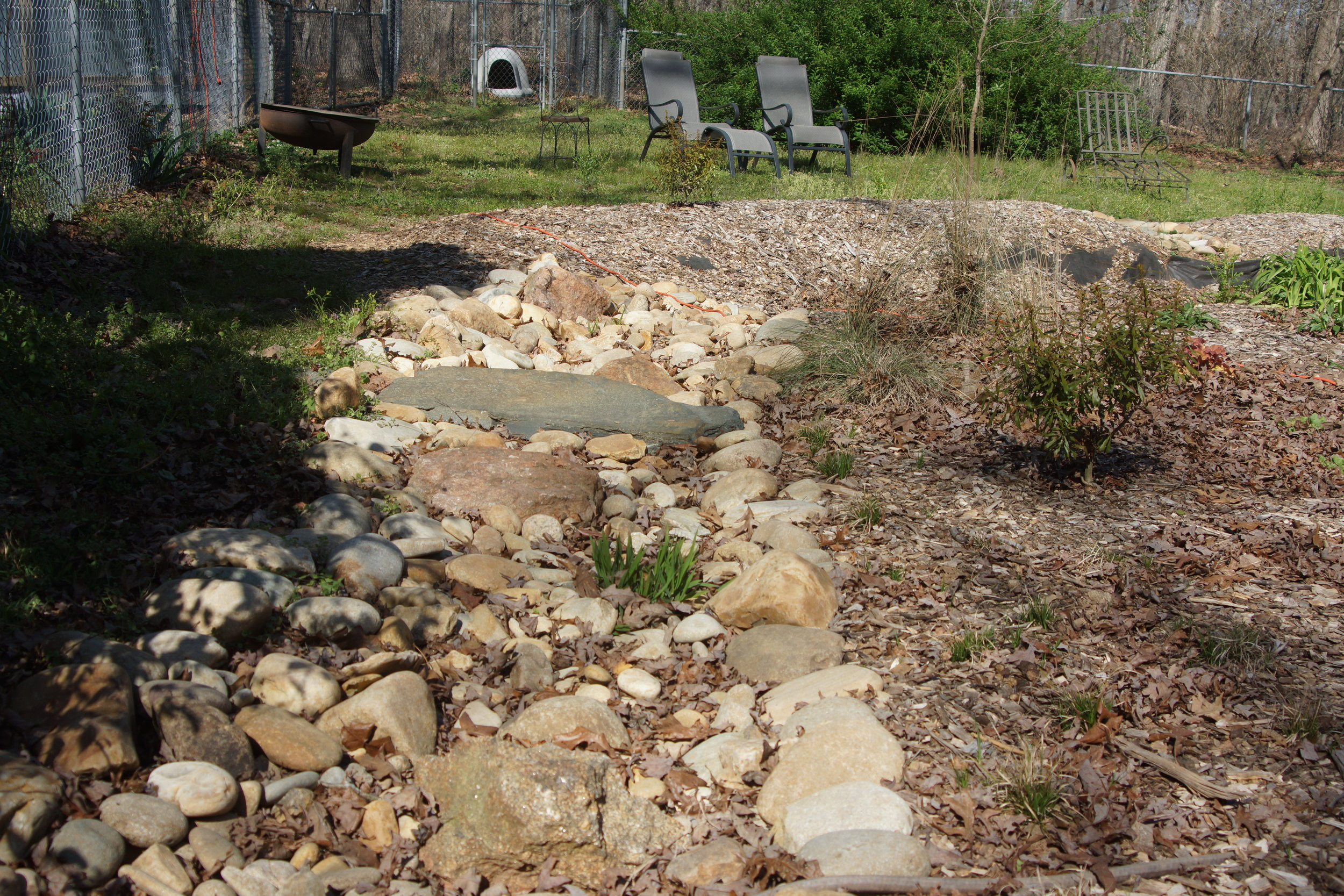 Dry creek bed that leads to rain garden.JPG