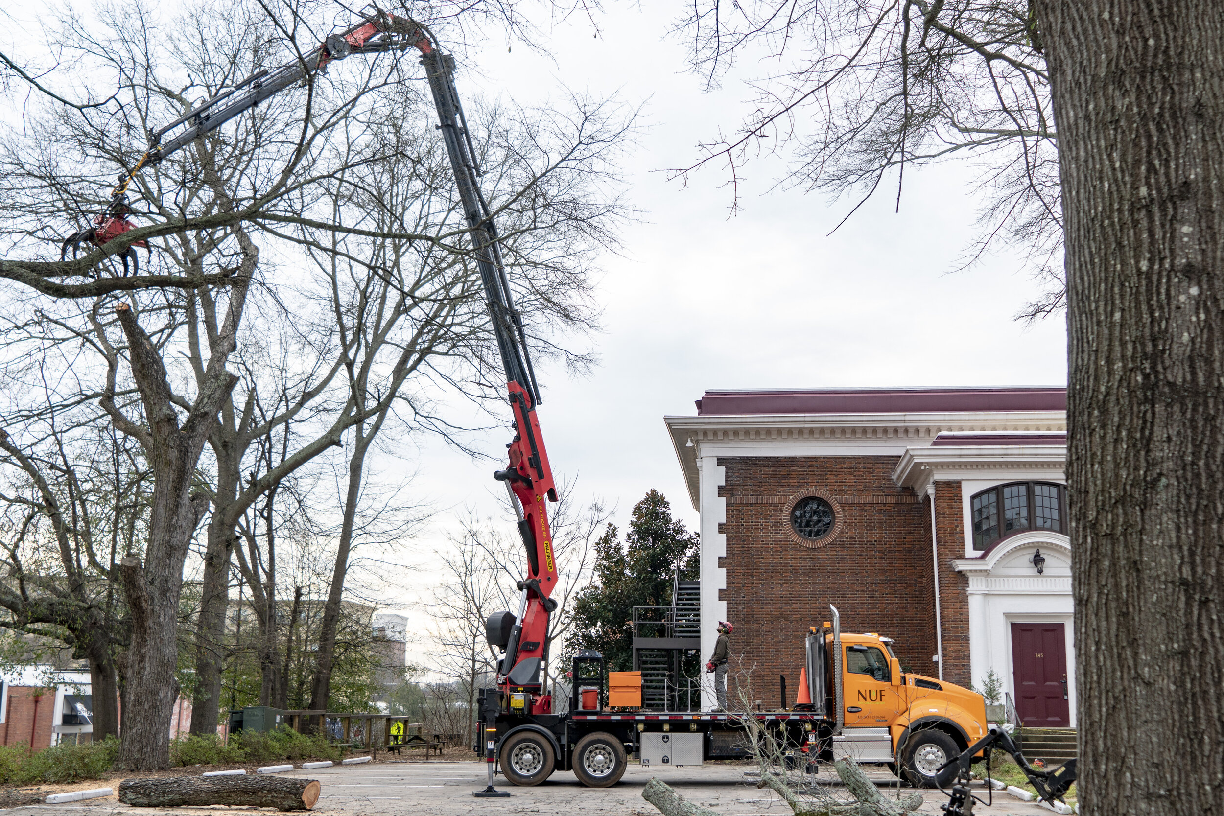 Plan Now To Avoid Future Storm Damage New Urban Forestry