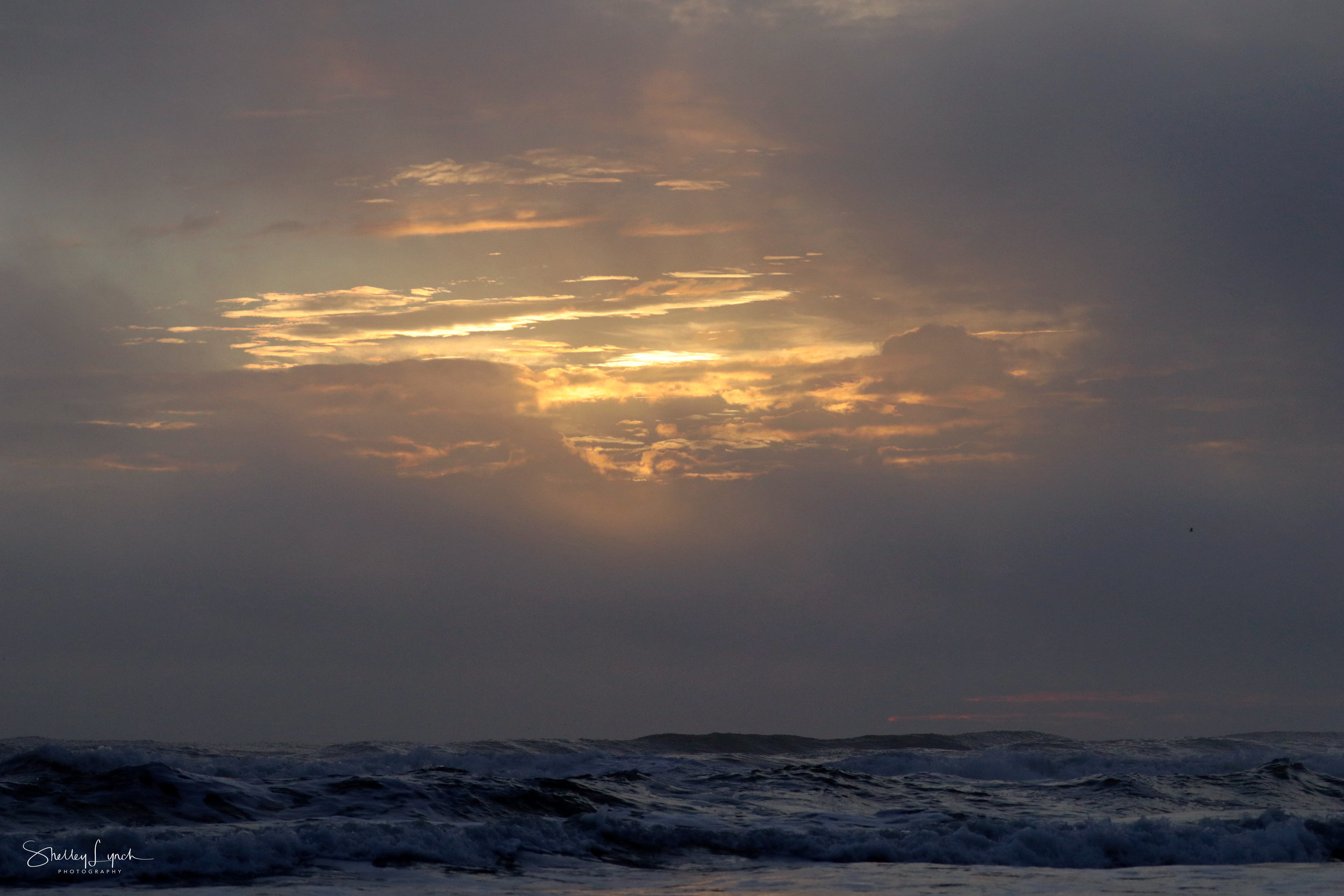 Pre sunrise softness