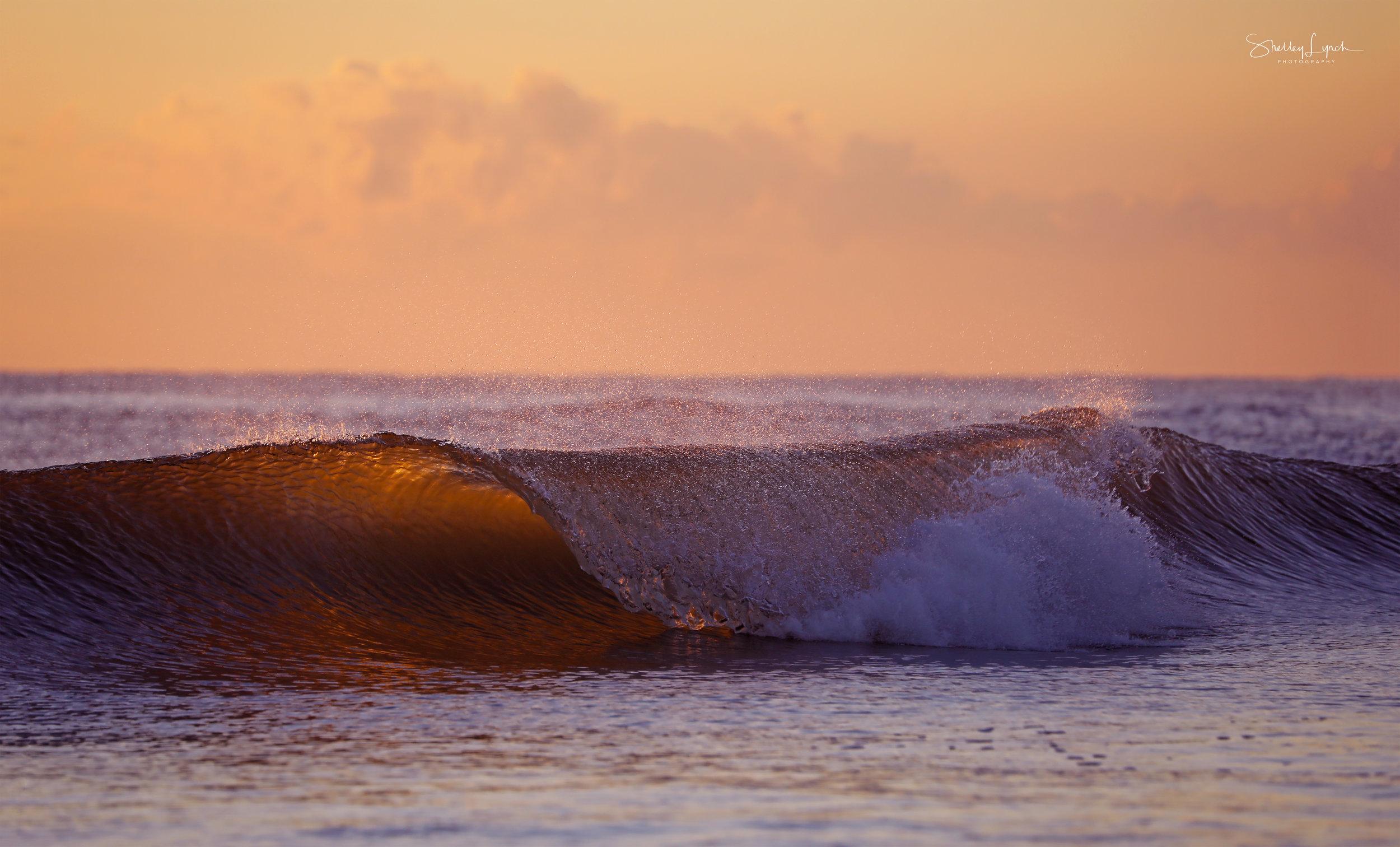 wave3.jpg