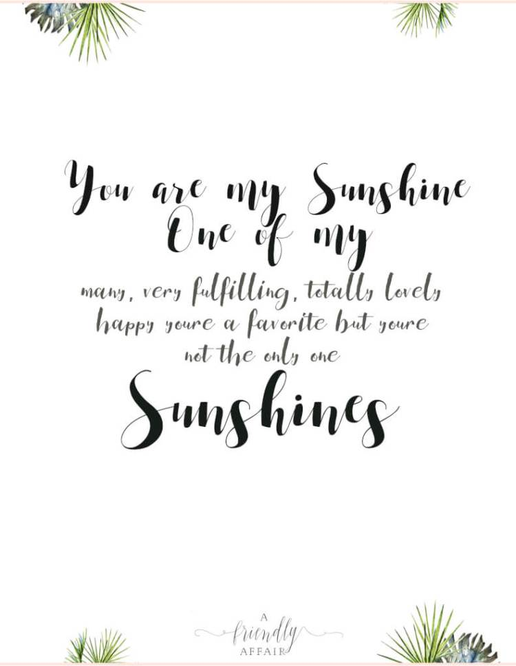 You-are-my-sunshine-hand-lettering.jpg