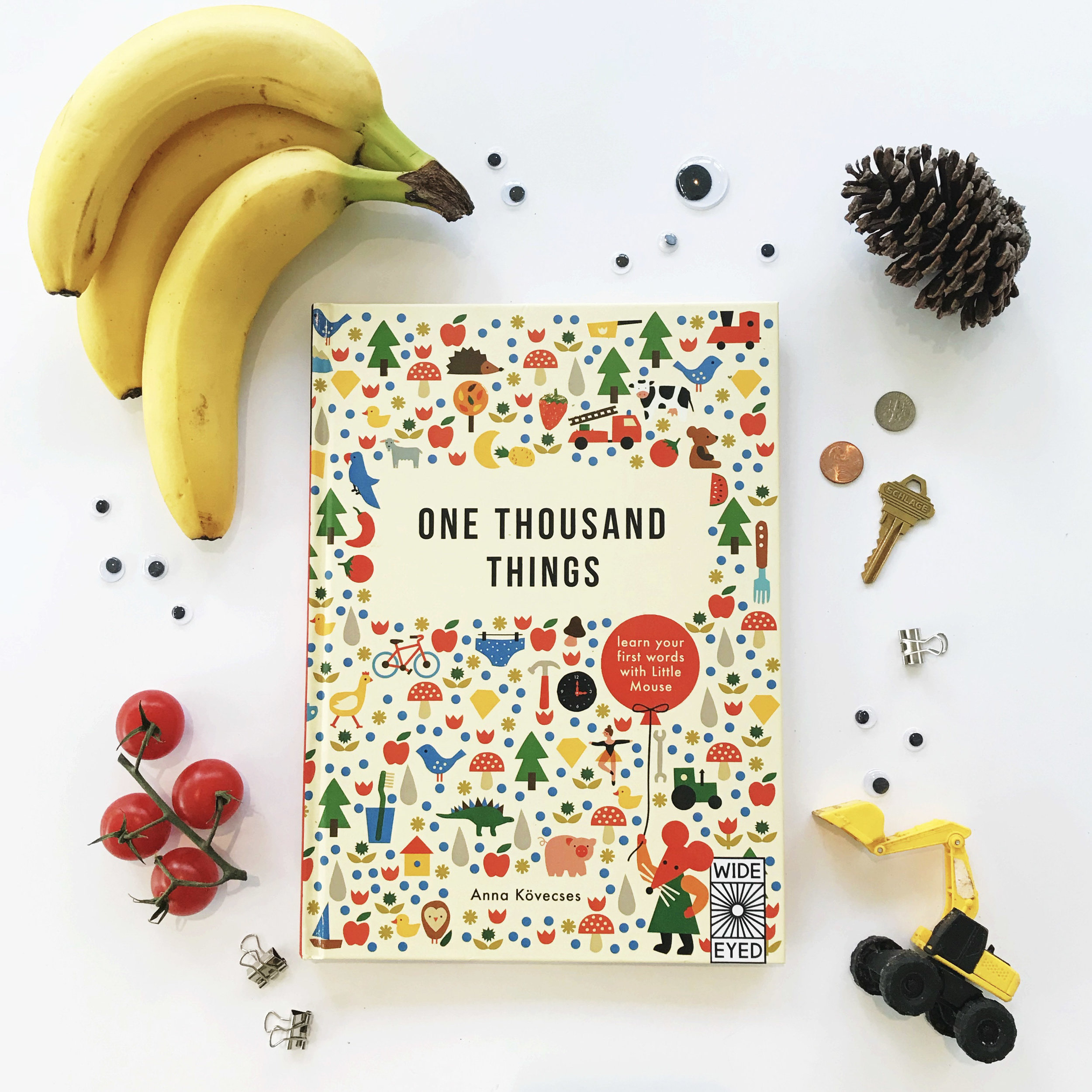 seek-and-find-one-thousand-things-kidlit-picture-books-looking-with