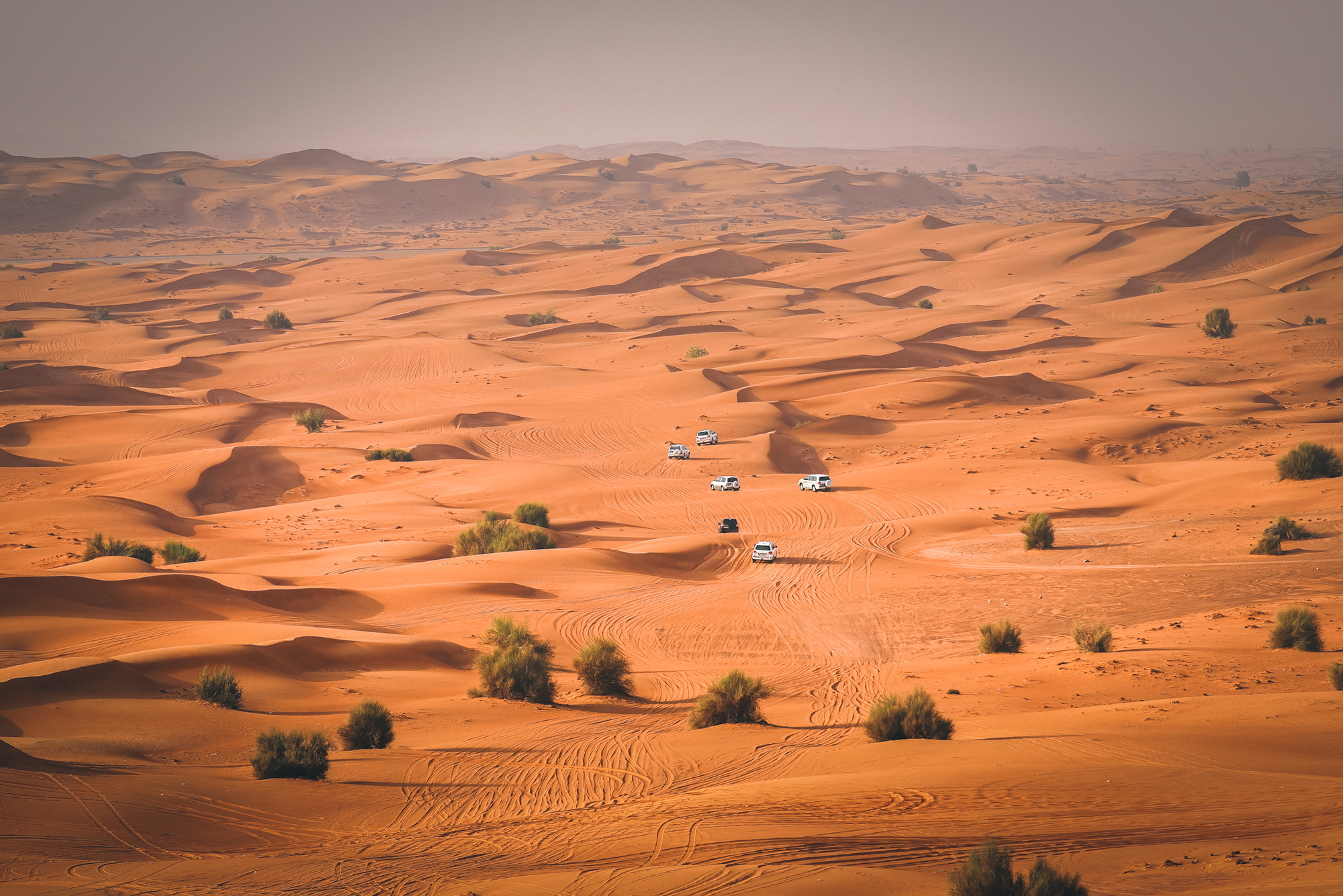Jeeps-in-caravan-in-orange-desert-dubai.jpg