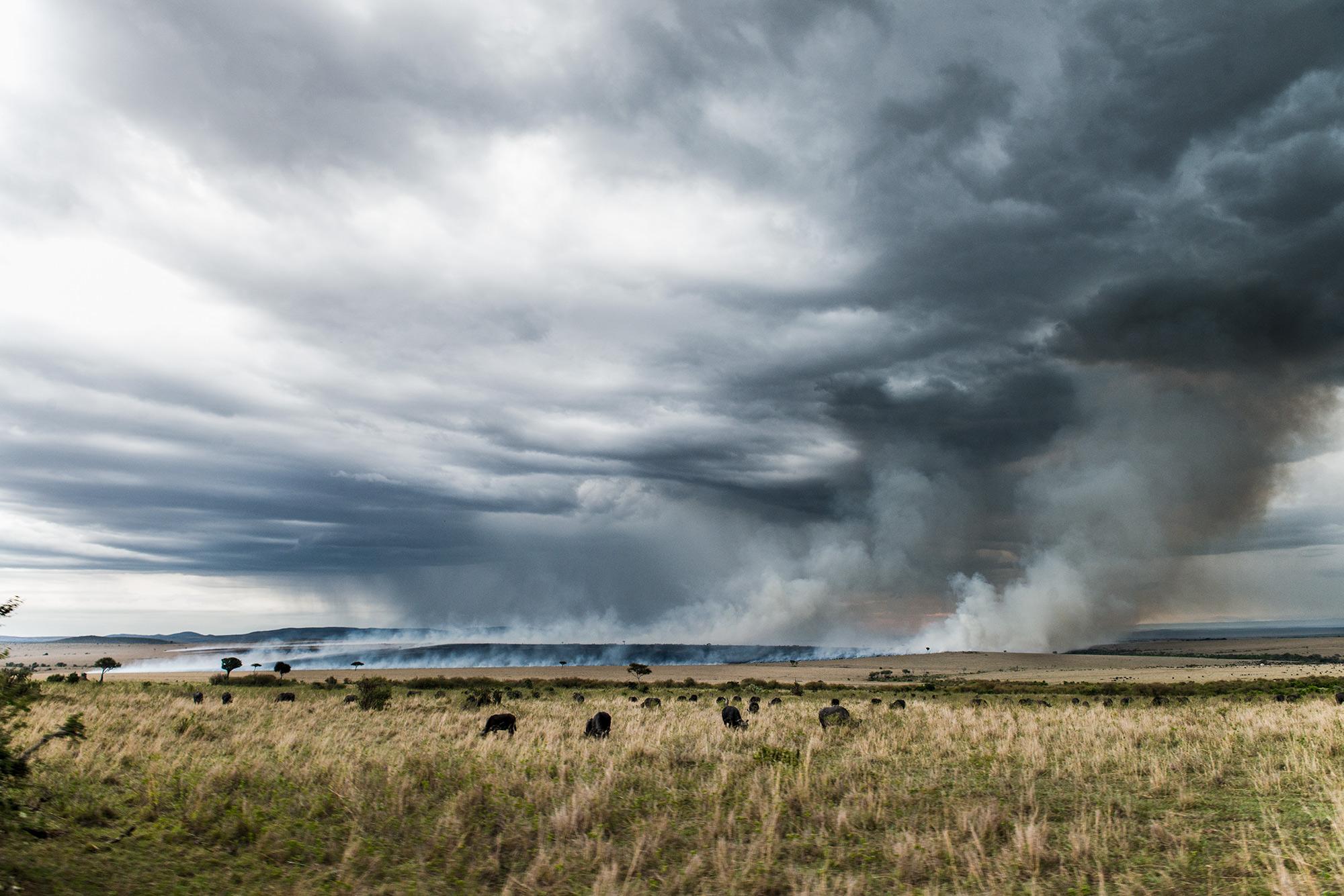 Masai-Mara-Fire.jpg