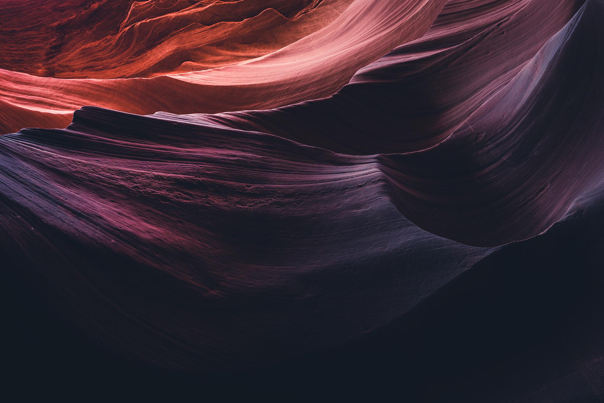Antelope-7.jpg
