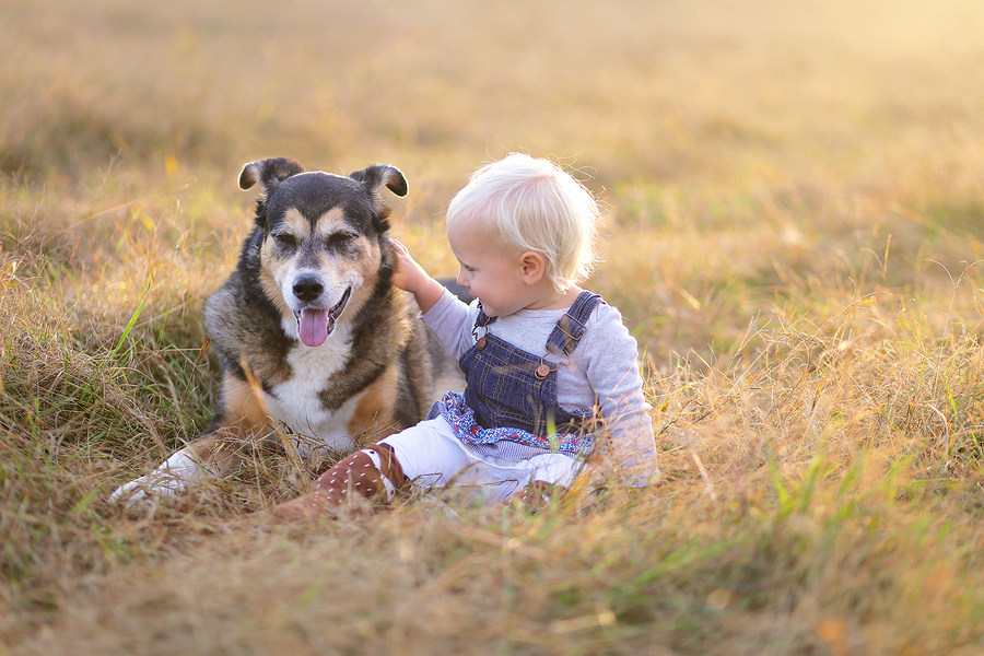 kids-dogs-veterinary-care.jpg