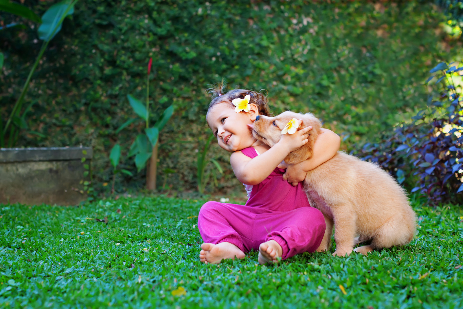 kids-dogs-veterinary-services.JPG