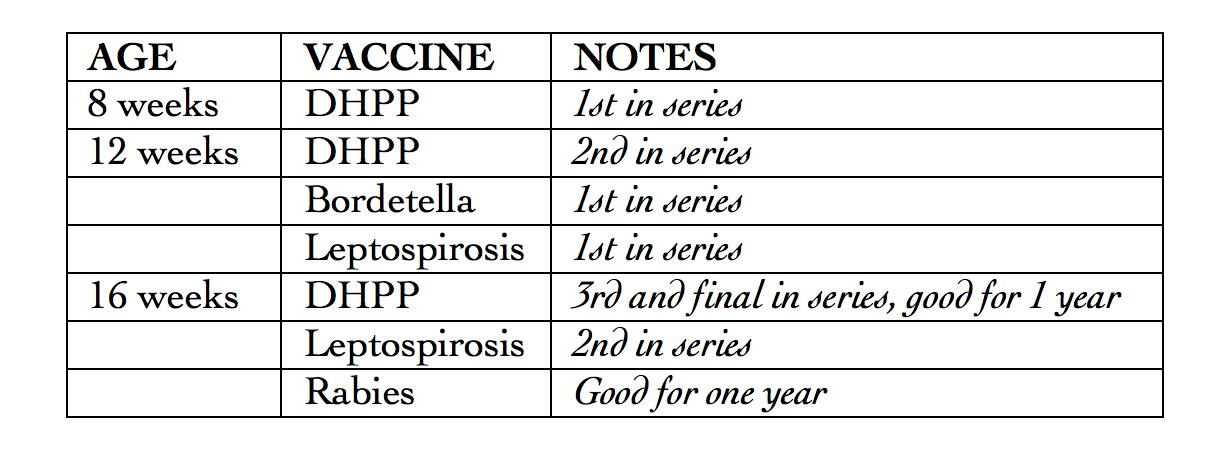 Puppy Vaccine Schedule