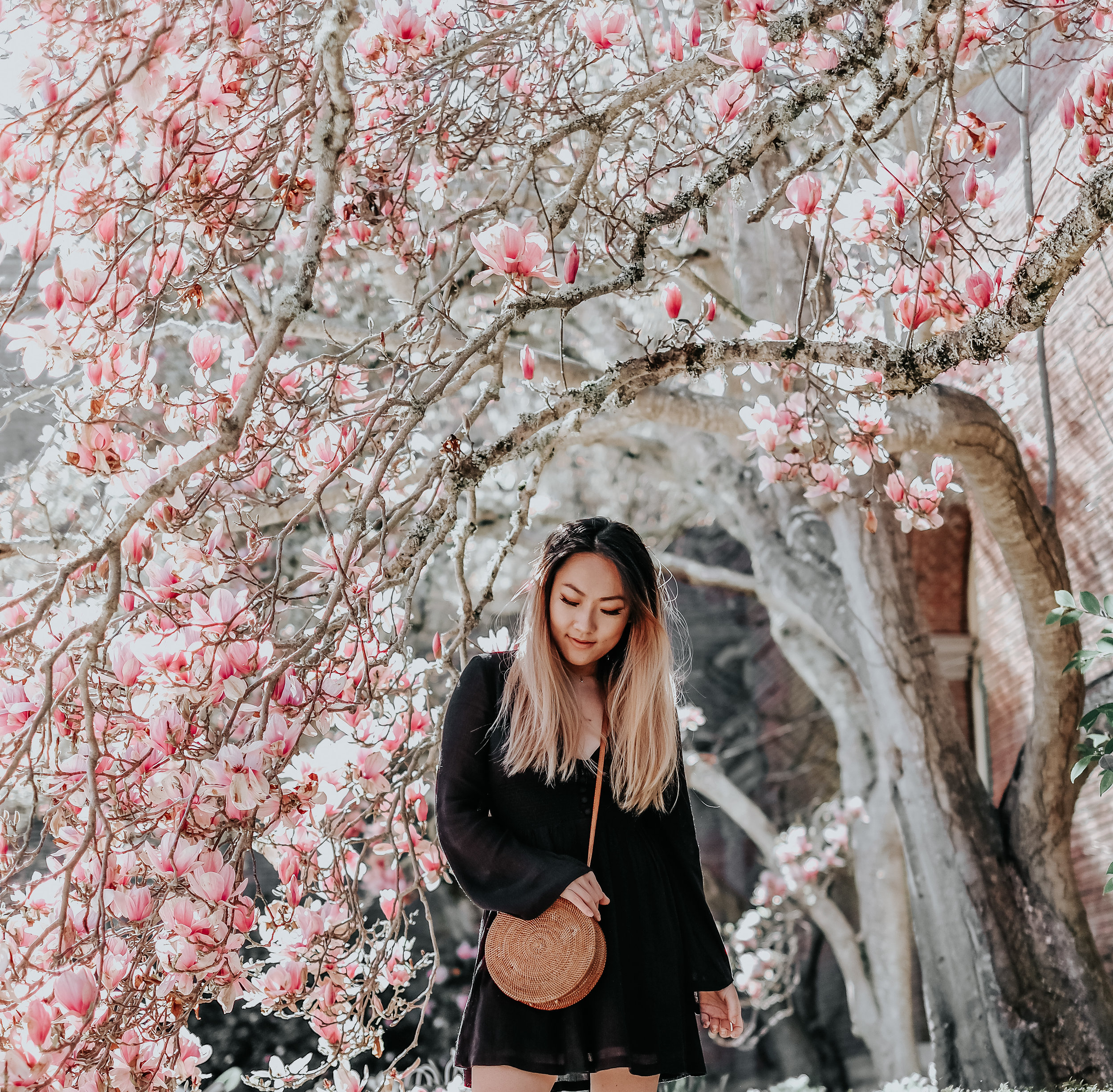 Photo by  Thy Nguyen