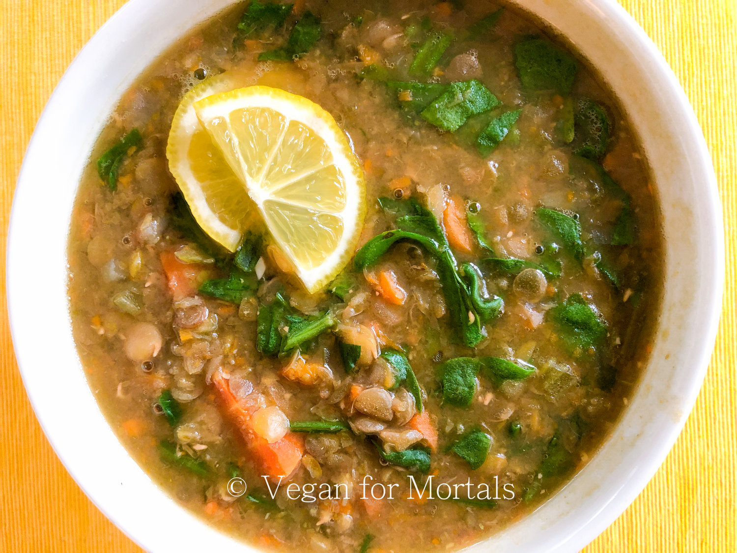Lentil Soup - This soup is so easy to make and incredibly delicious. Its incredibly filling and super healthy as well! This is a very basic version of the soup, but feel free to add in any other additions you may like: diced tomatoes, potatoes, swiss chard, kale, zucchini, pasta - the additions are endless!