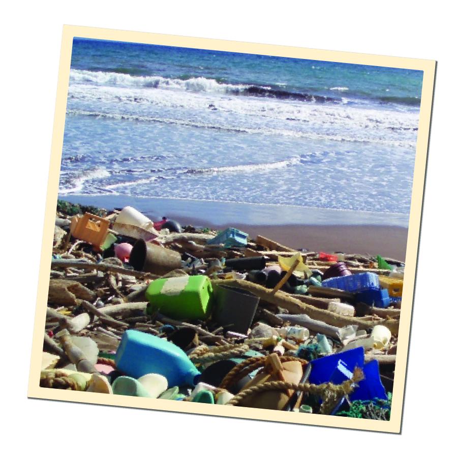 Web-OceanPollution2-04.jpg