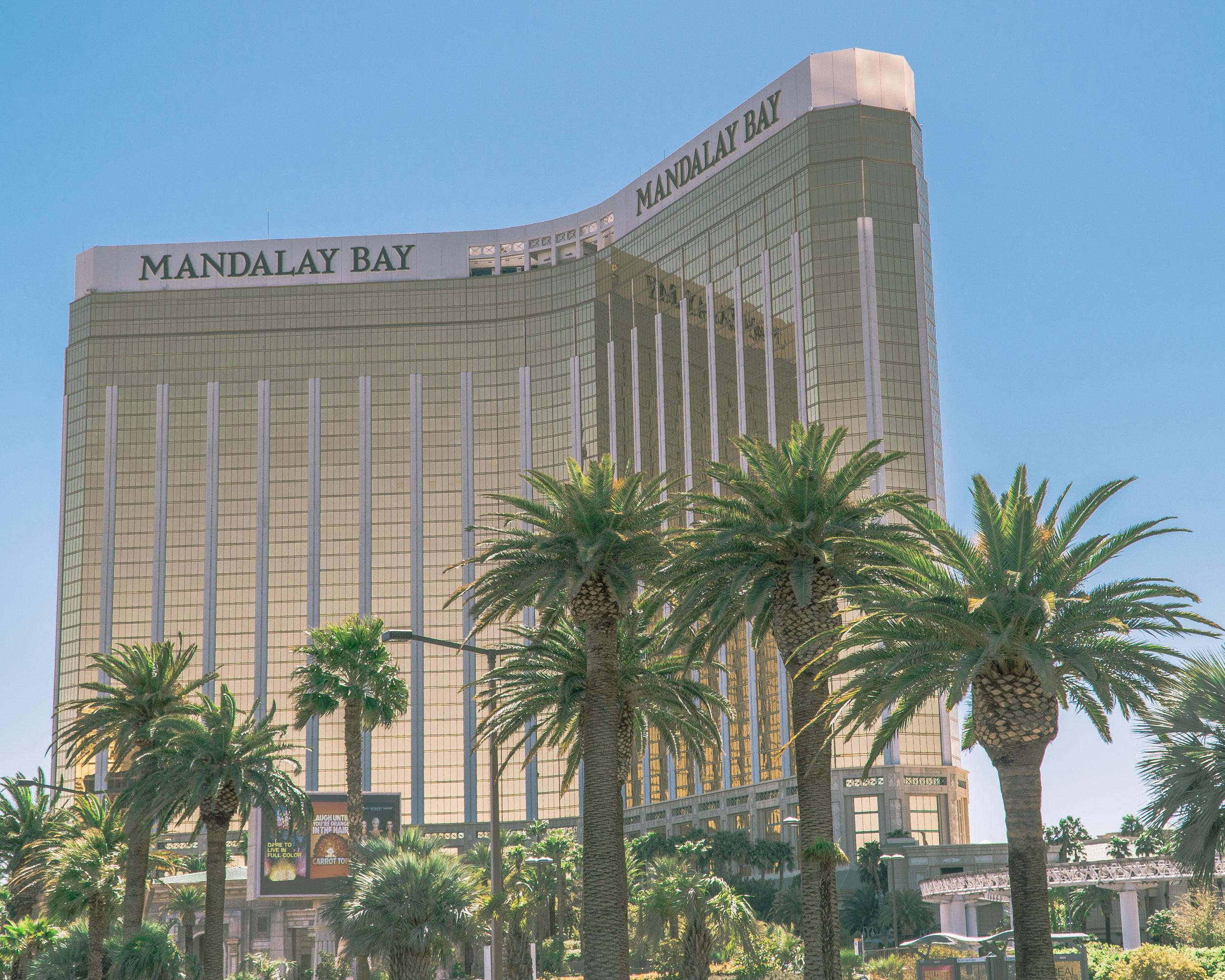 Goal Traveler-Mandalay Bay_Las Vegas.jpg