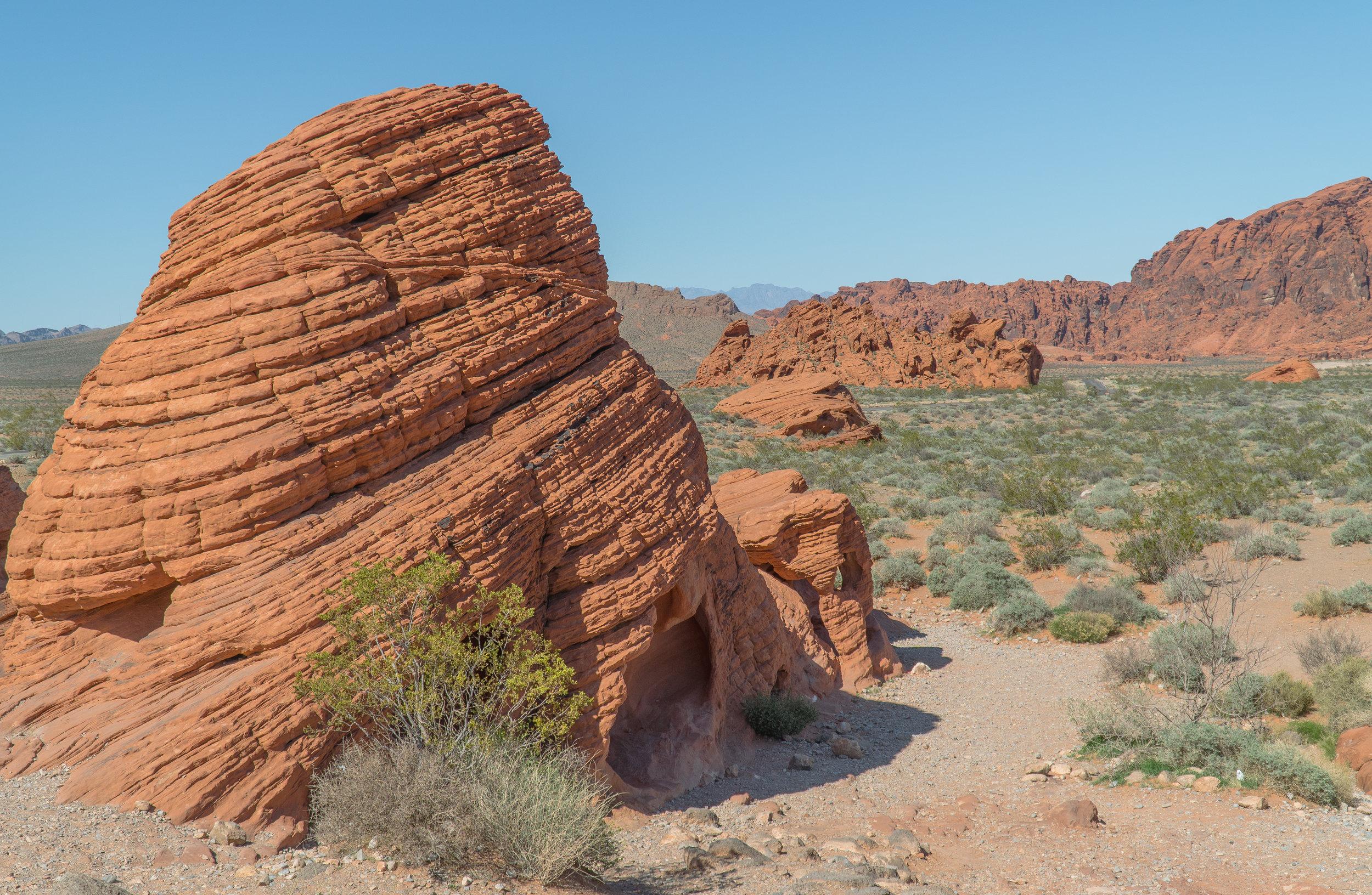 Goal Traveler_Valley Of Fire_Nevada.jpg