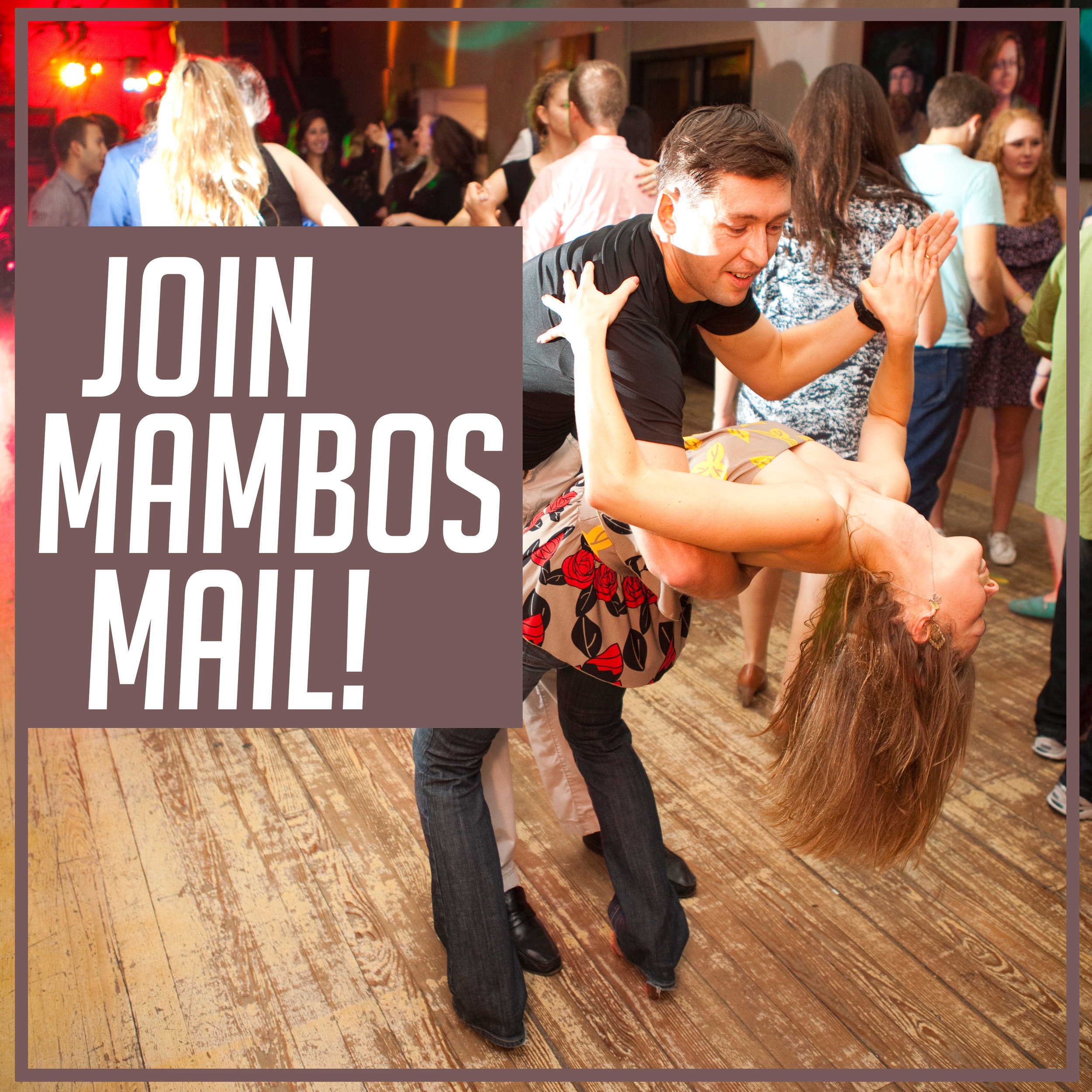 What are we up to each week? - CLICK HERE to receive Mambos Mail once a week!Don't like emails? Follow us on our Facebook page and get updates in your newsfeed!