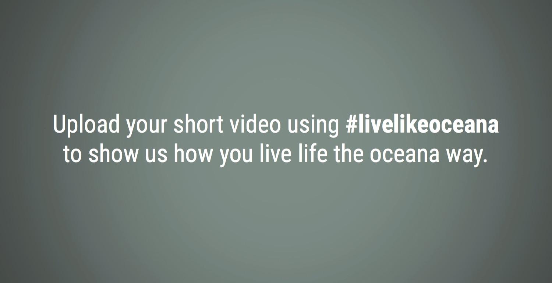 Video-Screen-Grab-10.jpg