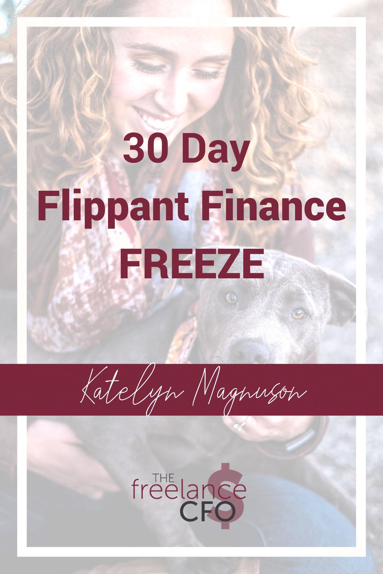 30 day flippant finance freeze.jpeg