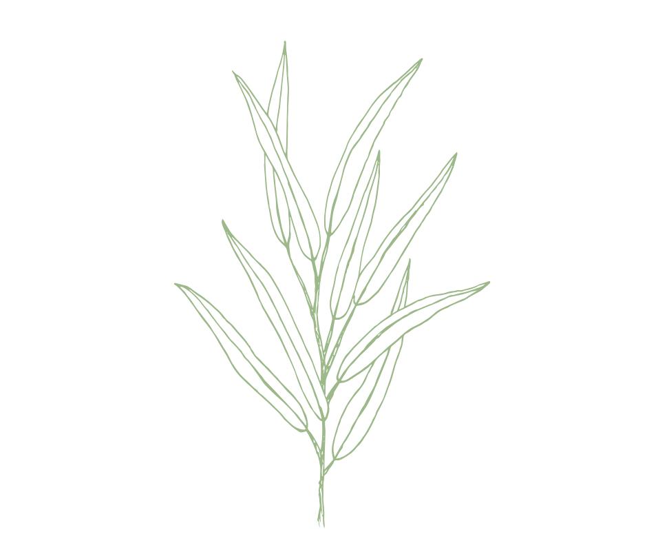 green flower.png