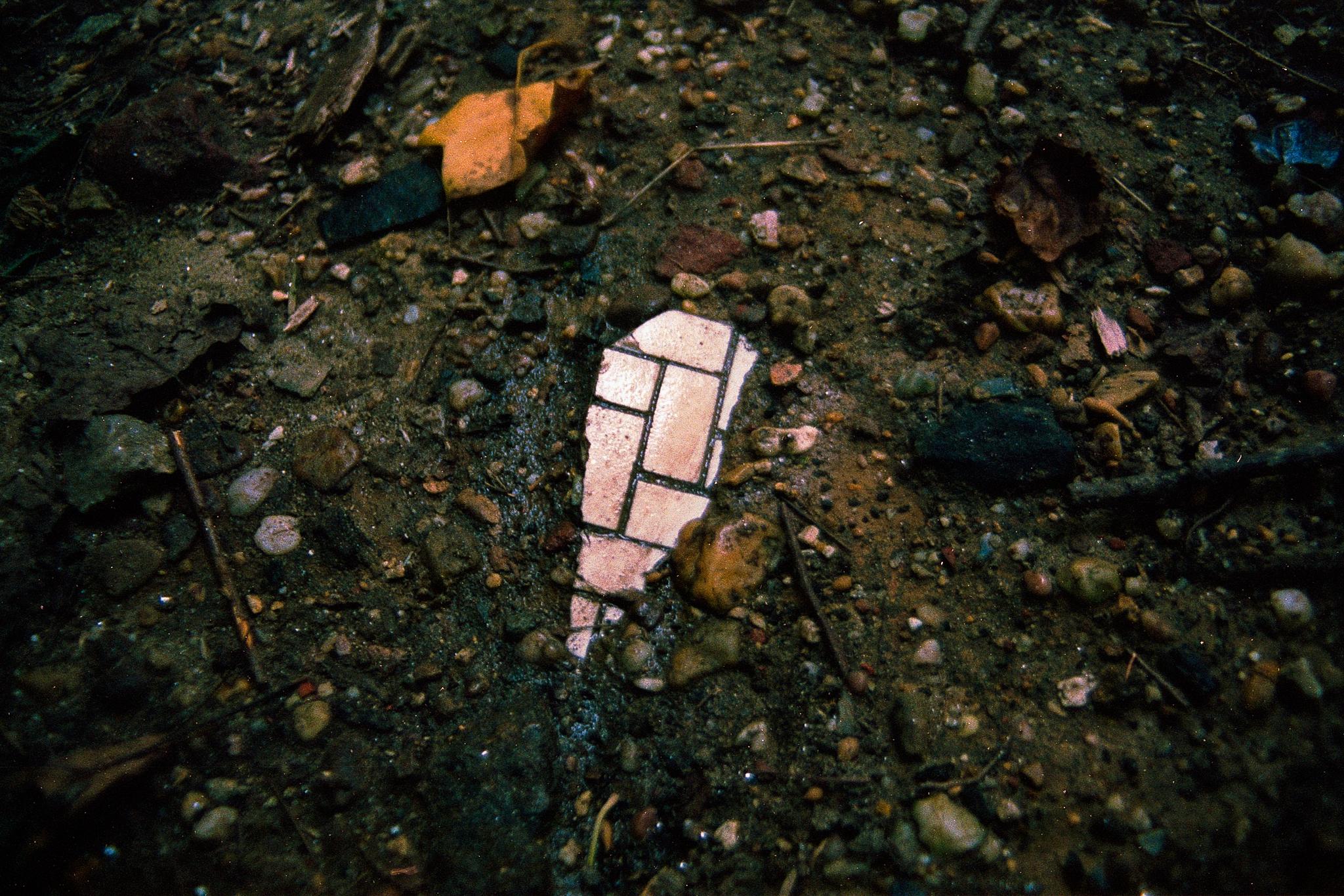 camuglia-16.09-18_web.jpg
