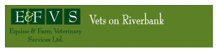 Ray Lenaghan, Vets on Riverbank