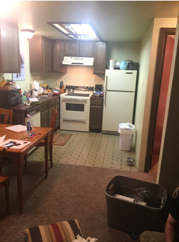 CABIN KITCHEN BEFORE.png