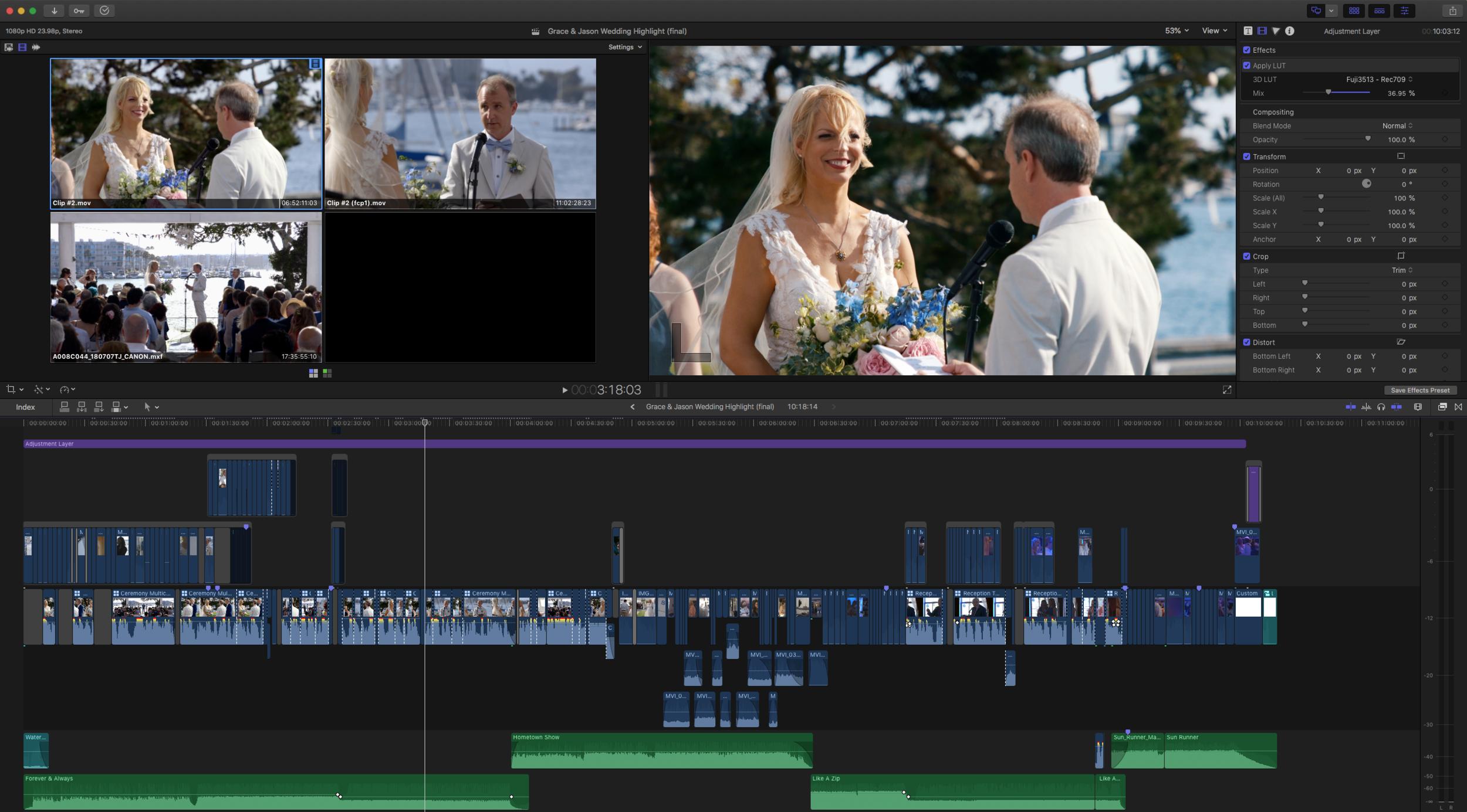Wedding Ceremony multiple camera angles