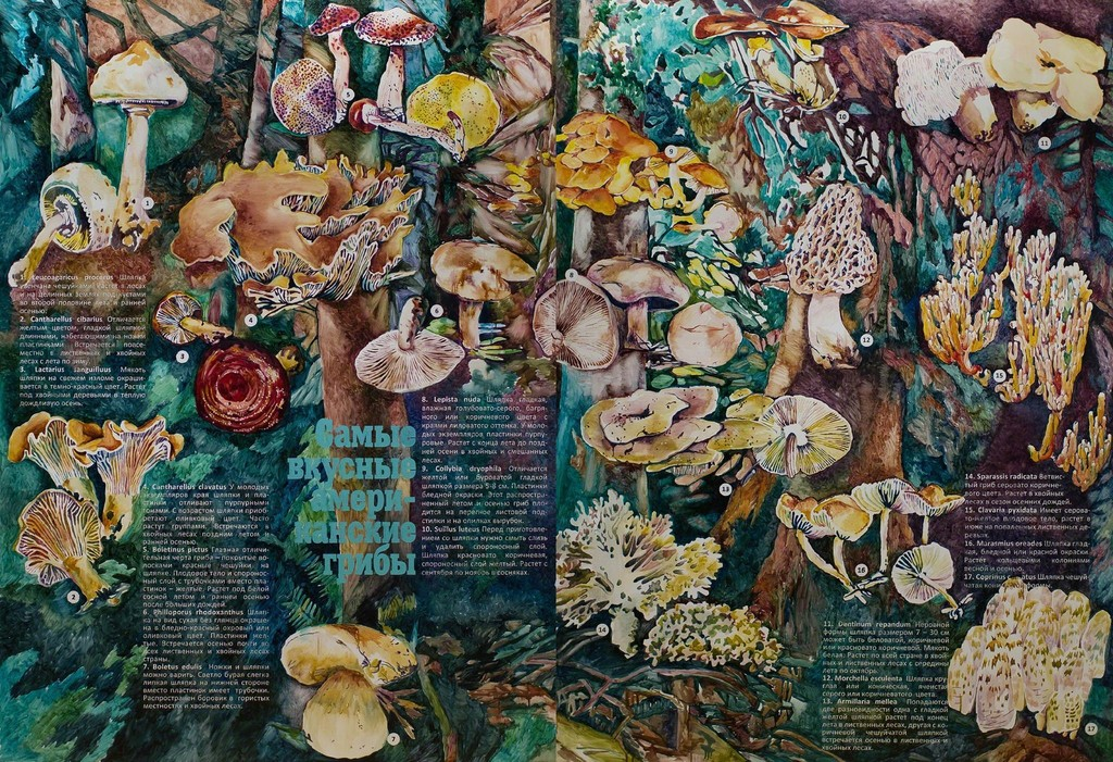 The Most Delicious American Mushrooms (Article) Diptych, 200 × 290 cm.jpg