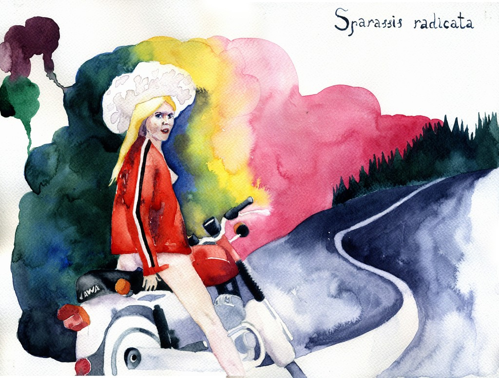 The Girl on the Scooter, 30.5 × 40.6 cm.jpg