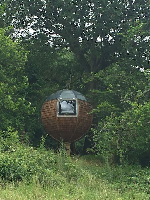 Partyfield Dorset party field tree sphere 9.jpg