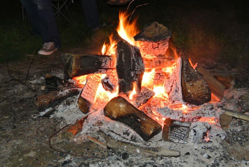 Partyfield Dorset party in a field log fire.jpg
