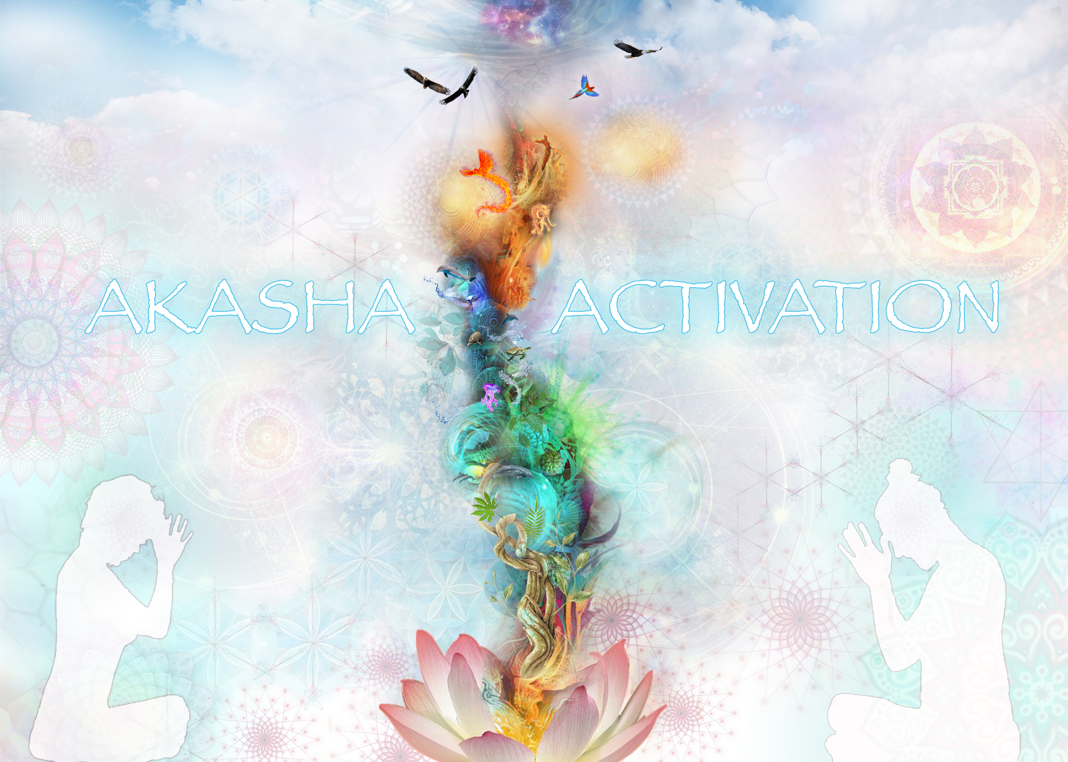 4 element akasha activation- jessica-vilches-yoga-deyan-gajic-meditation-teacher-training.jpg