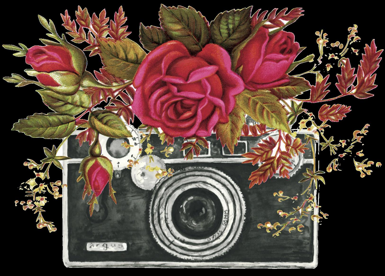 camera flower designs transp.png
