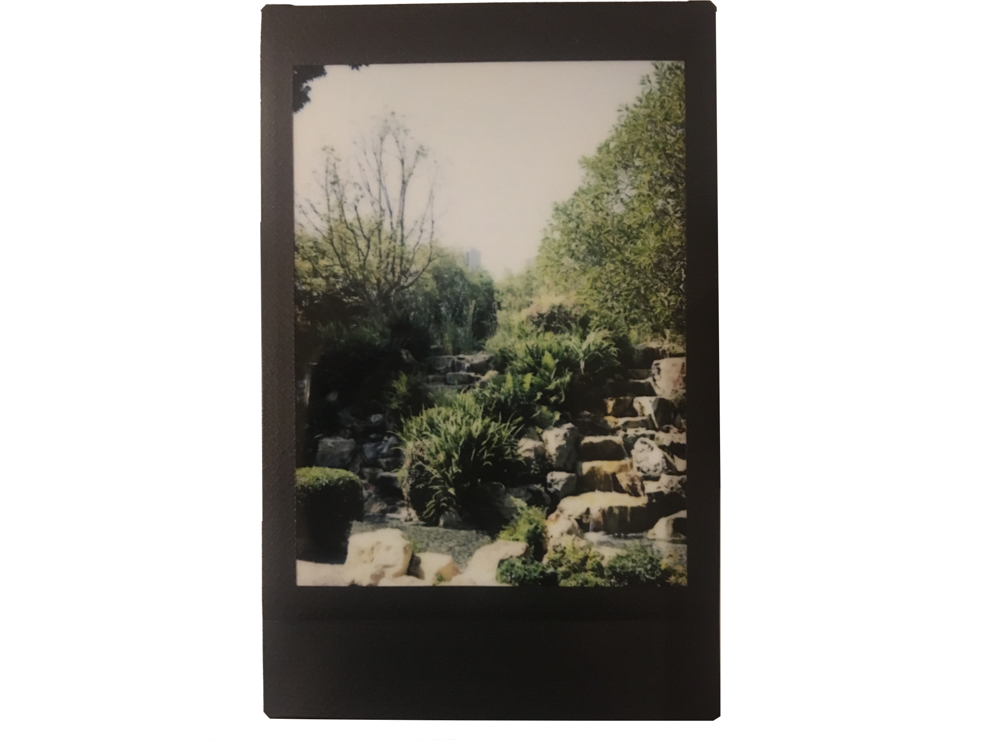 Japanese oasis in DTLA  Los Angeles, California, USA