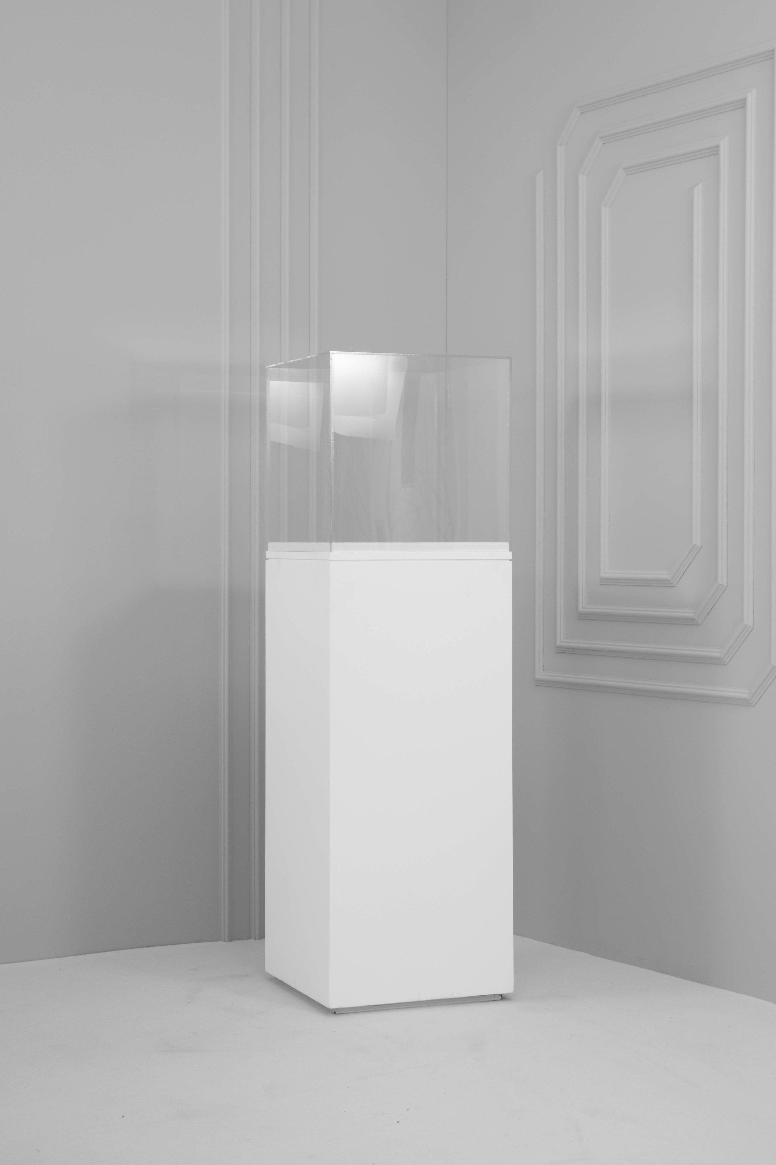 standard wooden plinth w perspex.jpg