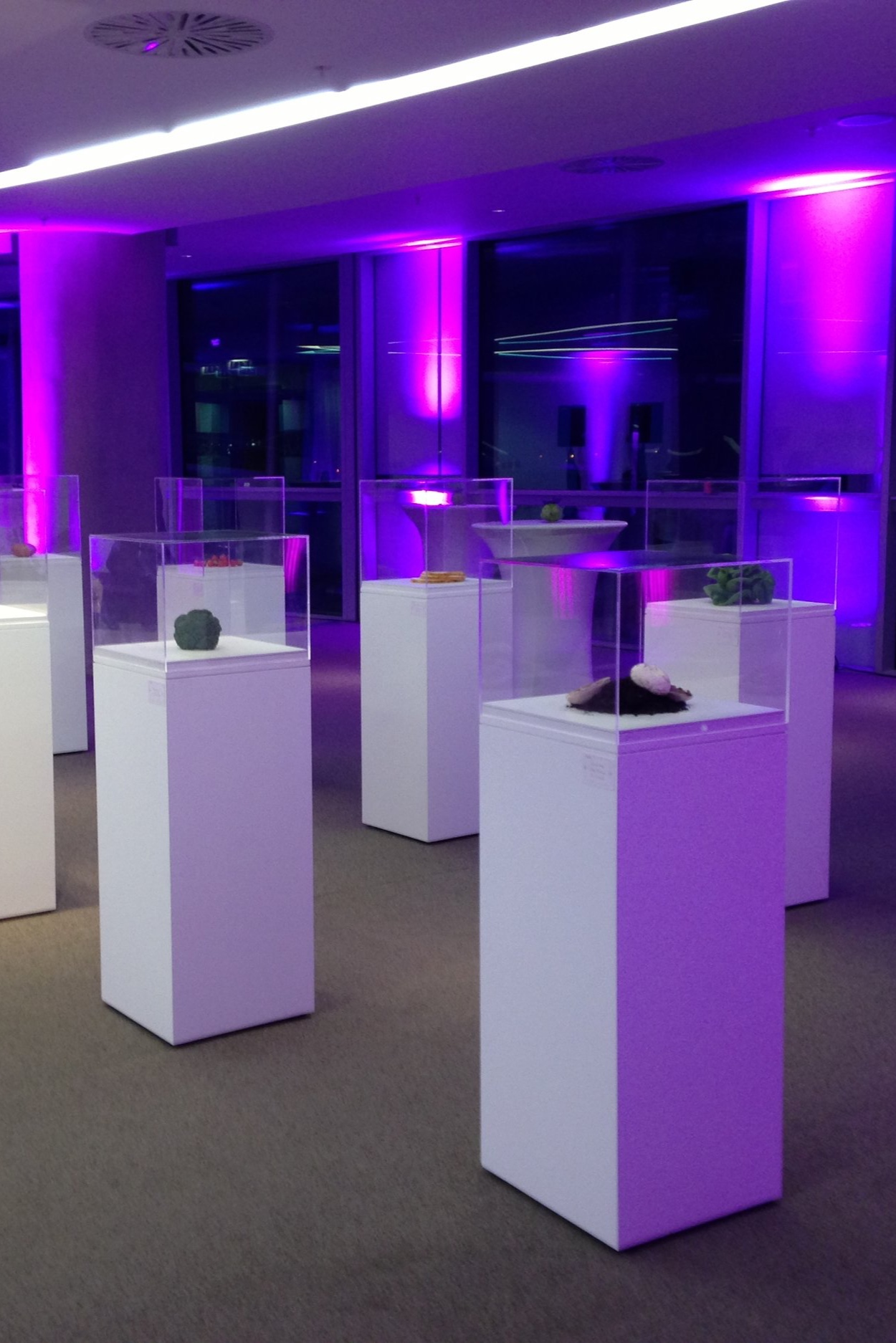 Standard display plinths.jpg