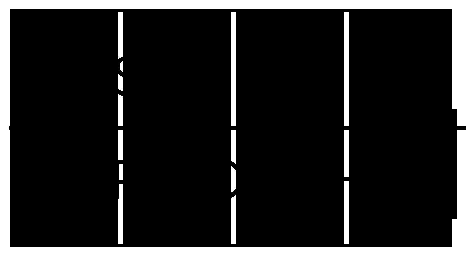 STR Logo Alternative 2.png