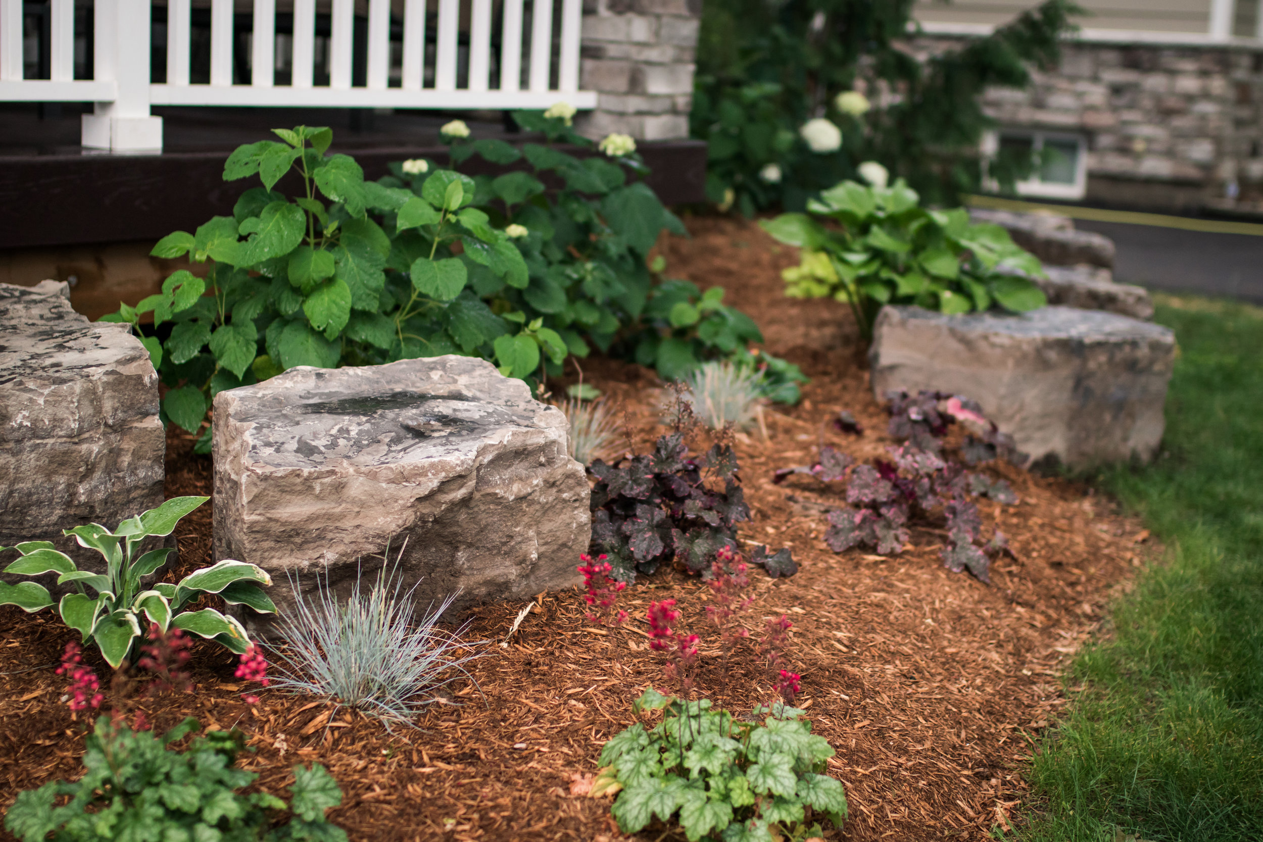 Softscaping - Accent Rocks, Plants, Trees, Mulches & Soils.
