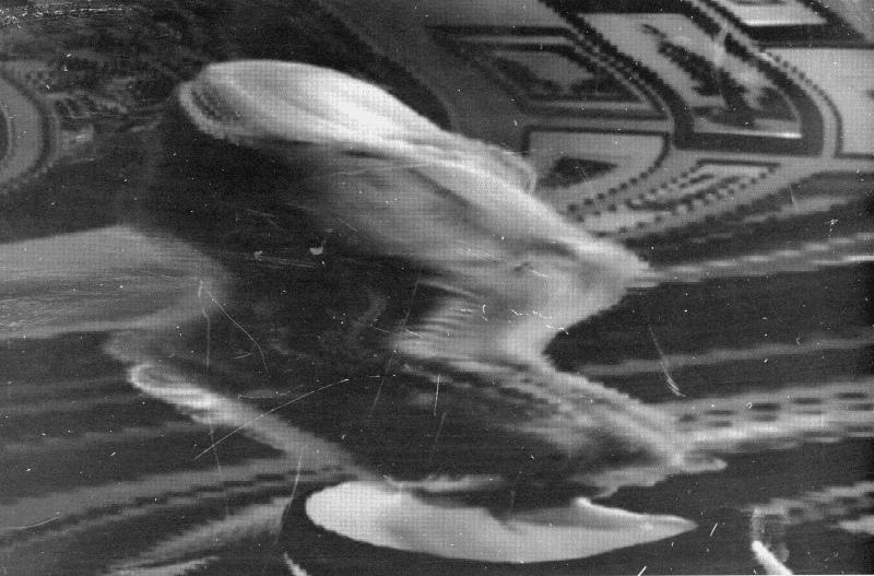 BENJAMIN VERHOEVEN / SCANNED LOCOMOTION / LIVE INSTALLATIE  'Scanned Locomotion' is een onderzoek naar hoe beweging zich binnen een beeldkader relateert tot het scan procedé. Het bouwt voort op Benjamin Verhoevens vorig werk 'Sculptural Movement' (2014) waar hij al gebruik maakte van verschillende camerastandpunten ten opzichte van stilstaande sculpturen. Gedurende het weekend zal Benjamin Verhoevenop bepaalde momenten live aan het werk te zien zijn tijdens de toepassing van het scan procedé.