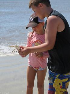 Crab-&-Shrimp-41.jpg