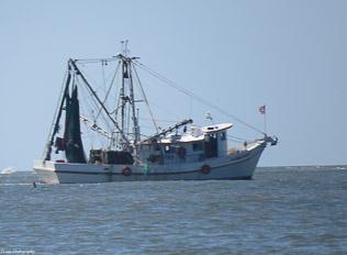 Crab-&-Shrimp-27.jpg