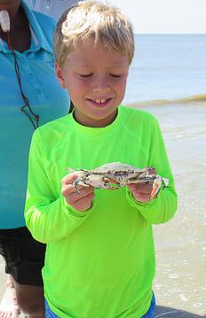 Crab-&-Shrimp-15.jpg