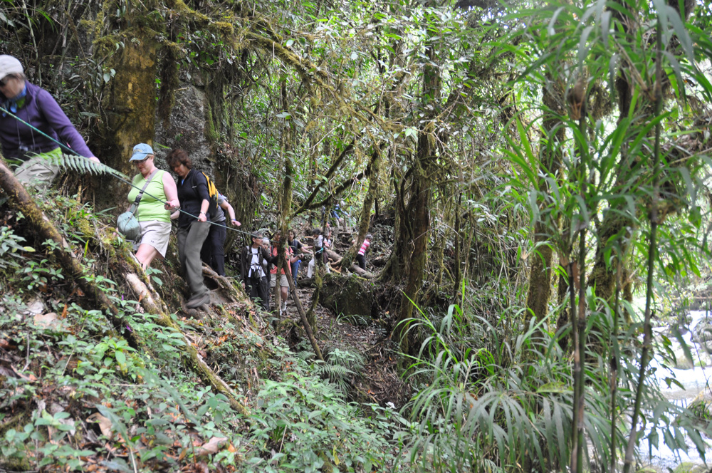 Exploring in Costa Rica with Travel With Ann