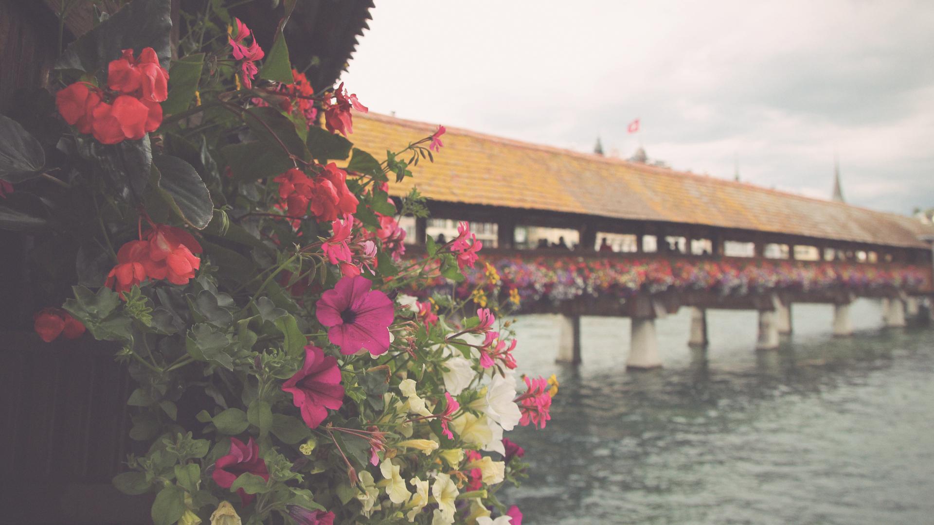 Zurich_13_o.jpg